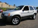 2003 Ford Escape Satin Silver Metallic