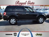 2009 Black Ford Escape XLT #55621930