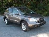 2009 Urban Titanium Metallic Honda CR-V EX-L #55622327