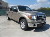 2011 Pale Adobe Metallic Ford F150 XLT SuperCrew #55658068