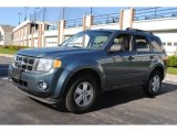 2010 Steel Blue Metallic Ford Escape XLT #55658254
