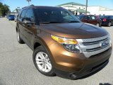2011 Golden Bronze Metallic Ford Explorer XLT #55658137