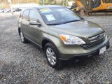 2009 Green Tea Metallic Honda CR-V EX-L 4WD #55779629