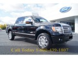 2011 Ebony Black Ford F150 Platinum SuperCrew 4x4 #55846597