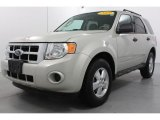 2009 Light Sage Metallic Ford Escape XLS #55874856