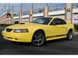 2002 Zinc Yellow Ford Mustang V6 Coupe #55906243