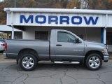 2005 Mineral Gray Metallic Dodge Ram 1500 SLT Regular Cab 4x4 #55905928