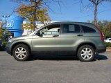 2008 Green Tea Metallic Honda CR-V EX 4WD #55957054