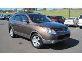 Hyundai Veracruz 2010 Data, Info and Specs