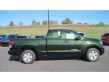 Spruce Green Mica Toyota Tundra in 2012