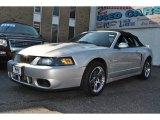 2003 Silver Metallic Ford Mustang Cobra Convertible #55957001