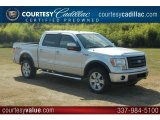 2010 Ingot Silver Metallic Ford F150 FX4 SuperCrew 4x4 #55956830