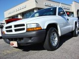 2003 Bright White Dodge Dakota SXT Regular Cab #56013530