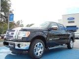 2011 Ebony Black Ford F150 XLT SuperCrew #56086954