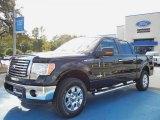 2011 Ebony Black Ford F150 XLT SuperCrew 4x4 #56086953