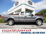 2011 Sterling Grey Metallic Ford F150 XLT SuperCab 4x4 #56086900