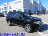 2009 Black Ford Escape XLT V6 4WD #56086855