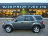2011 Sterling Grey Metallic Ford Escape XLT 4WD #56087244