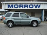2006 Titanium Green Metallic Ford Escape Limited 4WD #56188954