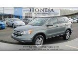 2011 Opal Sage Metallic Honda CR-V EX-L #56189174