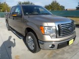 2011 Pale Adobe Metallic Ford F150 Texas Edition SuperCrew #56189063
