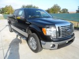 2011 Ebony Black Ford F150 Texas Edition SuperCrew #56189062