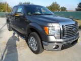 2011 Sterling Grey Metallic Ford F150 Texas Edition SuperCrew #56189060