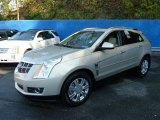 2011 Gold Mist Metallic Cadillac SRX 4 V6 AWD #56231470