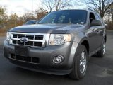 2011 Sterling Grey Metallic Ford Escape XLT V6 4WD #56451595