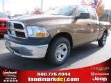 2012 Saddle Brown Pearl Dodge Ram 1500 ST Quad Cab #56481131