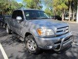 2005 Silver Sky Metallic Toyota Tundra SR5 Double Cab #56513695
