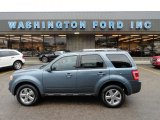 2010 Steel Blue Metallic Ford Escape Limited V6 4WD #56513967