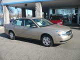 2005 Light Driftwood Metallic Chevrolet Malibu LS V6 Sedan #56564011