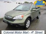 2008 Green Tea Metallic Honda CR-V EX-L 4WD #56610867