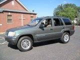 Onyx Green Pearlcoat Jeep Grand Cherokee in 2002