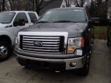 2011 Sterling Grey Metallic Ford F150 XLT SuperCrew 4x4 #56610077