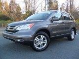 2010 Urban Titanium Metallic Honda CR-V EX-L #56705229