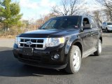 2009 Black Ford Escape XLT V6 4WD #56780742