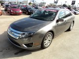 2010 Sterling Grey Metallic Ford Fusion SEL #56789494