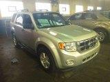 2009 Brilliant Silver Metallic Ford Escape XLT V6 #56789143