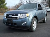 2010 Steel Blue Metallic Ford Escape XLT V6 4WD #56873803