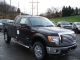 2012 Ford F150 XLT SuperCab 4x4 Data, Info and Specs