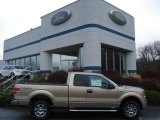 2011 Pale Adobe Metallic Ford F150 XLT SuperCab 4x4 #57034048