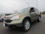 2009 Green Tea Metallic Honda CR-V EX 4WD #57034591