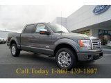 2011 Sterling Grey Metallic Ford F150 Platinum SuperCrew 4x4 #57034159