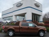 2012 Golden Bronze Metallic Ford F150 XLT SuperCrew 4x4 #57094757