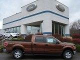2012 Golden Bronze Metallic Ford F150 XLT SuperCrew 4x4 #57094757