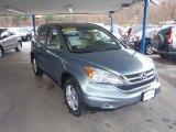 2010 Opal Sage Metallic Honda CR-V EX-L AWD #57095224