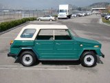 Volkswagen Thing Data, Info and Specs