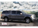 2010 Sterling Grey Metallic Ford F150 FX4 SuperCrew 4x4 #57094422